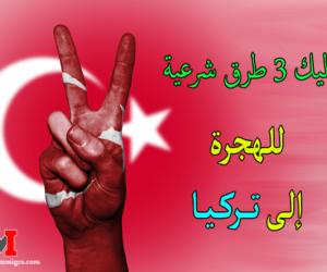 الهجره الى تركيا | إليك 3 طرق شرعية للحصول على فيزا الهجرة الى تركيا