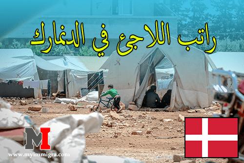 راتب اللاجئ في الدنمارك