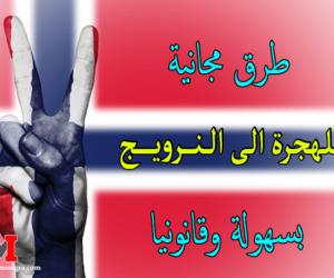 الهجرة الى النرويج | أسرع طرق تمكنك من الهجرة الى النرويج بسهولة وقانونيا